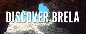 Kayak Brela marine life